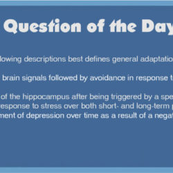 QOD 4: Impaired Physical Mobility (Muskuloskeletal/Basic Care and Comfort)