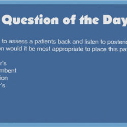 QOD 84: Best Patient Position to assess Posterior Lung Sounds (Respiratory/Health Promotion and Maintenance)